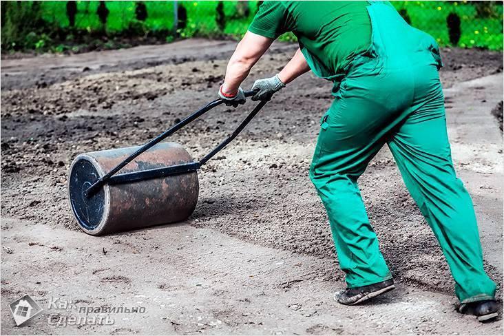 61f645e499b5647afff32e26ea064acb Посев травы для газона на даче своими руками: технология посадки весной